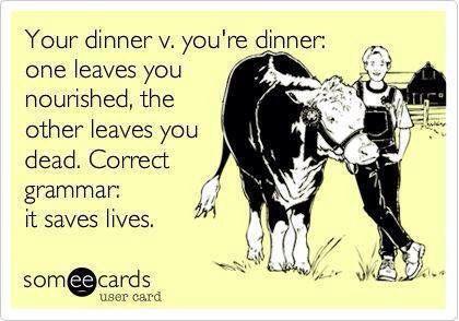 grammar_cow